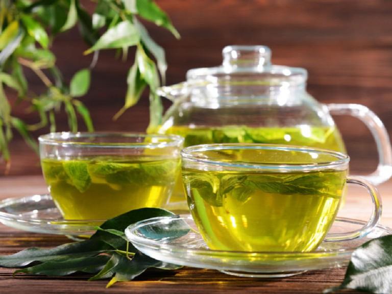 Một nghiên cứu kéo dài tám tuần đã xác định rằng catechin trong trà xanh làm tăng quá trình đốt cháy chất béo