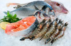 Top 4  loại hải sản giàu canxi mà người lớn tuổi nên bổ sung