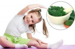 Tác dụng của rau chùm ngây với trẻ nhỏ
